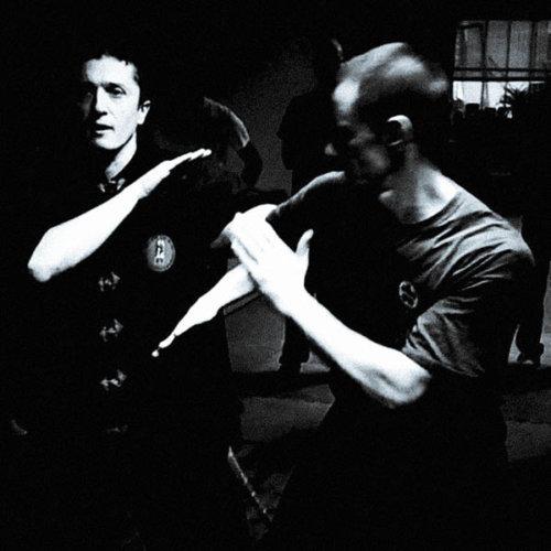 arm-lock-et-bil-jee-par-sifu-stephane-serror-et-david-mailhac-toulouse-carcassonne-wing-chun-kung-fu-association-yimwingchun