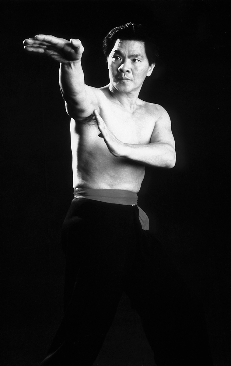 le-grand-maitre-william-cheung-wing-chun-kung-fu-legende-histoire-disciple-yip-man-didier-beddar-stephane-serror-genealogie-chine-toulouse-shaolin-association-yimwingchun-noir-blanc
