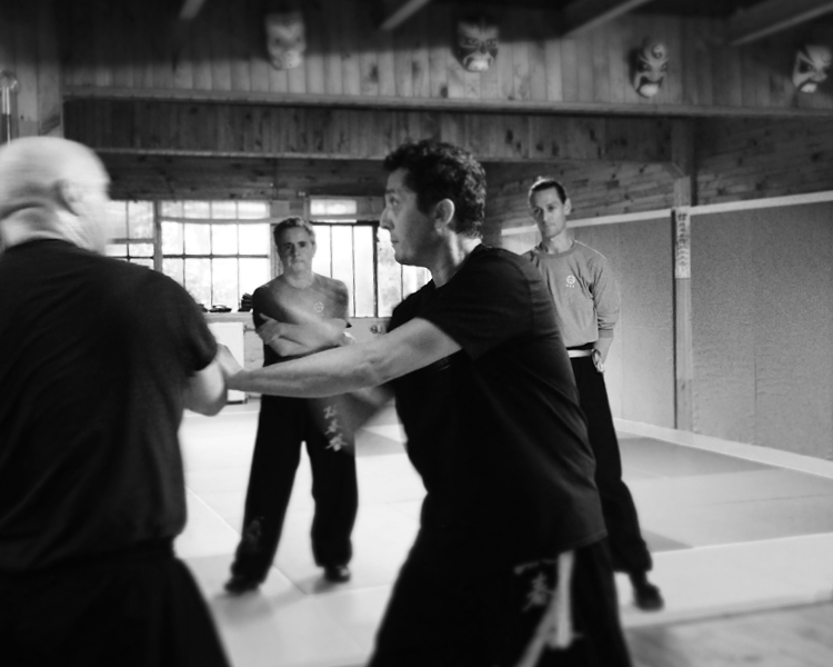 cours-kung-fu-adultes-avances-partenaire-sifu-stephane-serror-ecole-kung-fu-yim-wing-chun-toulouse