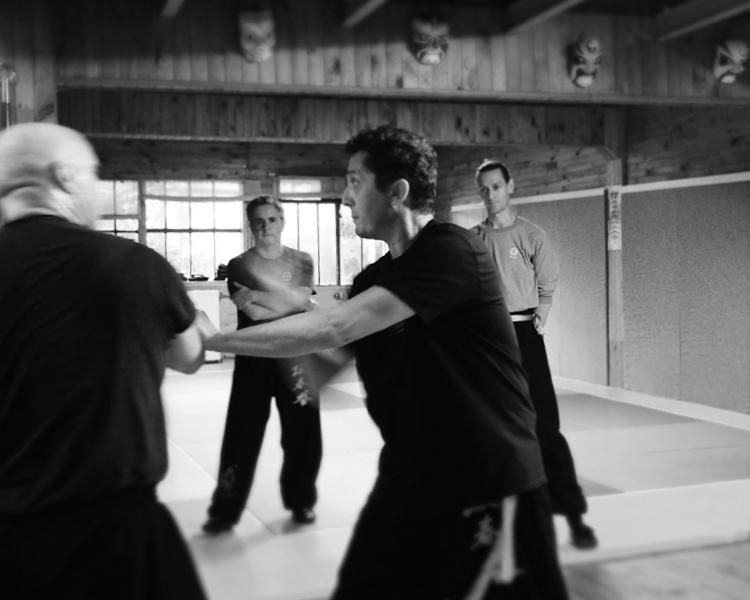 cours-kung-fu-adultes-avances-partenaire-sifu-stephane-serror-ecole-kung-fu-yim-wing-chun-toulouse