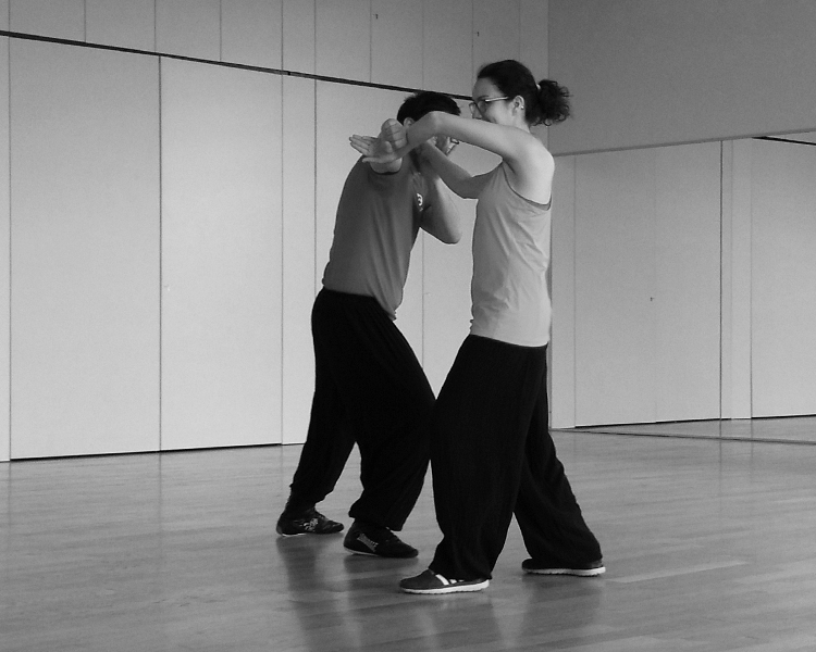cours-kung-fu-adultes-comite-entreprise-ce-thales-technique-sifu-stephane-serror-ecole-kung-fu-yim-wing-chun-toulouse
