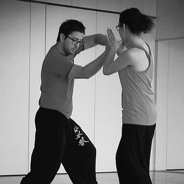 cours-kung-fu-ce-thales-accueil-sifu-stephane-serror-ecole-kung-fu-yim-wing-chun-toulouse