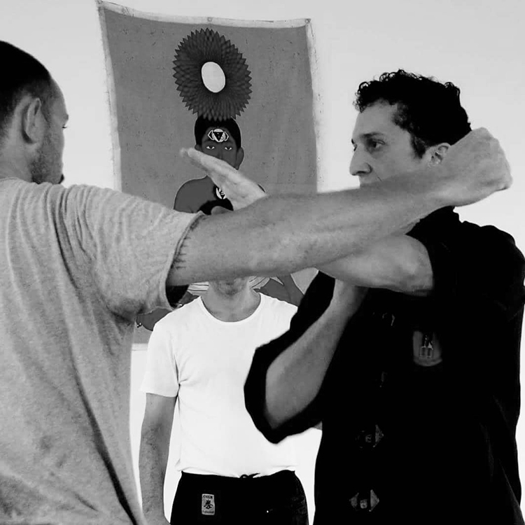 cours-kung-fu-cours-particulier-accueil-sifu-stephane-serror-ecole-kung-fu-yim-wing-chun-toulouse